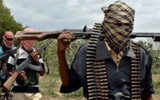 47 killed as B'Haram attacks Bama again