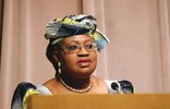 No plan to reduce capital expenditure – FG