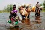 How sad! See photo of Nigerians fleeing to Chad to take refuge
