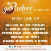 Gidi Culture Festival 2015 announces need to know info for festival goers