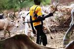 The Murder Of The Fulani: Yugoslavia Unfolding - Femi Fani-Kayode