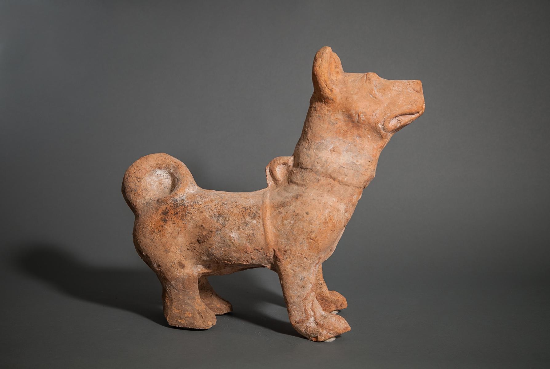 Chinese Terra Cotta Fighting Dog