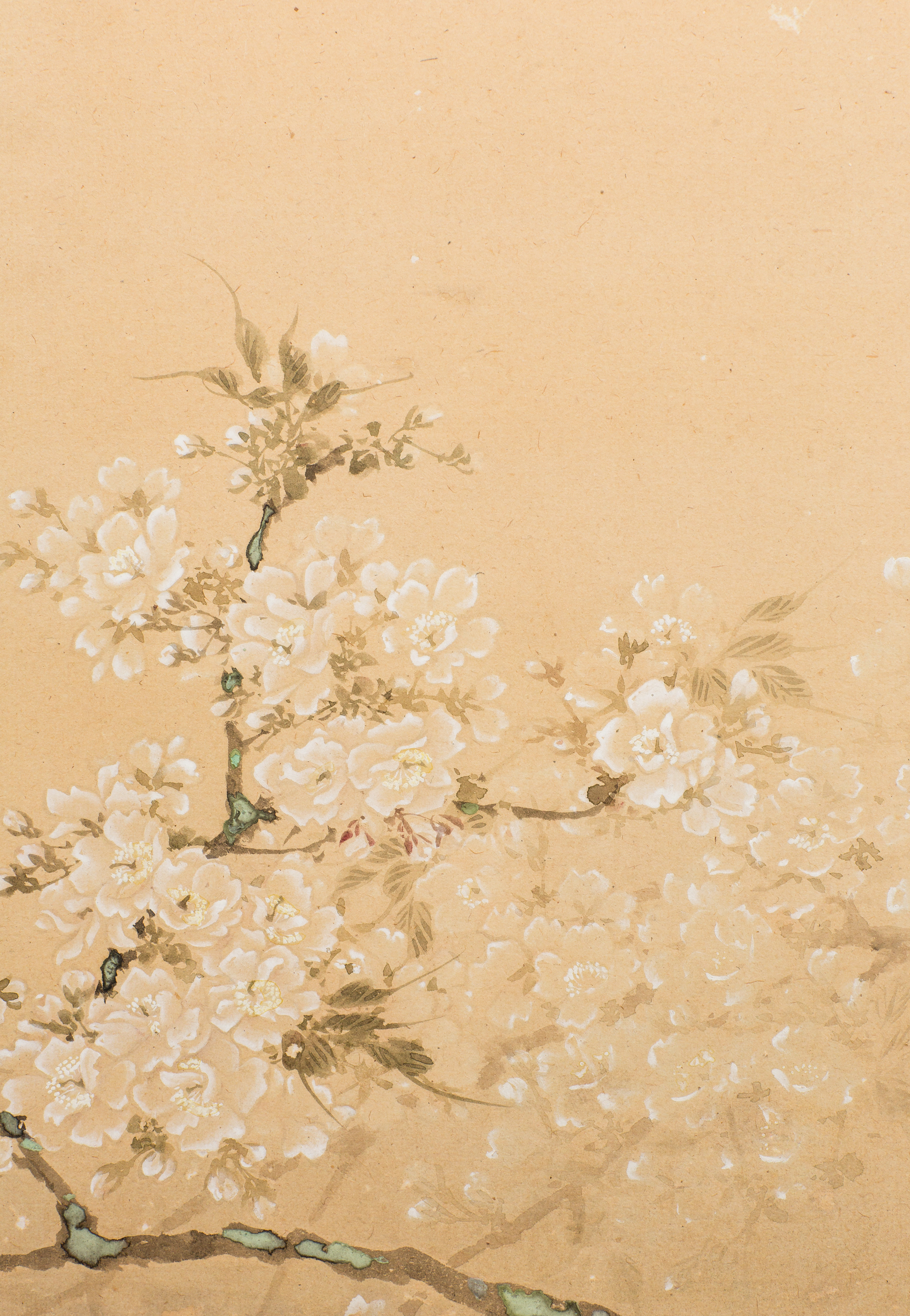 Japanese Four Panel Screen: Cherry In The Moonlight