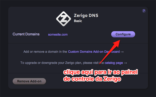 Painel do Zerigo DNS no Heroku