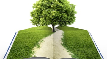 Зеленая философия вместе с Napura