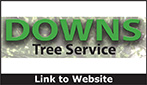 Website for Downs Tree Service