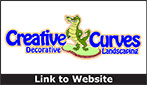 Website for Creative Curves