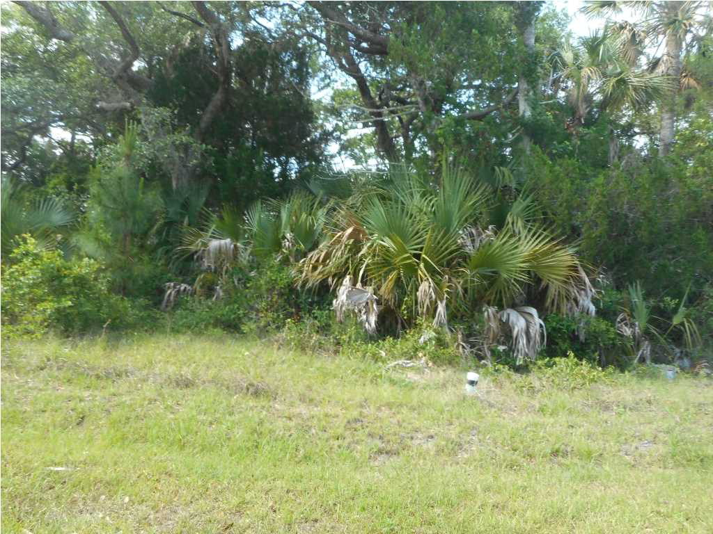 MLS Property 261857 for sale in Port St. Joe
