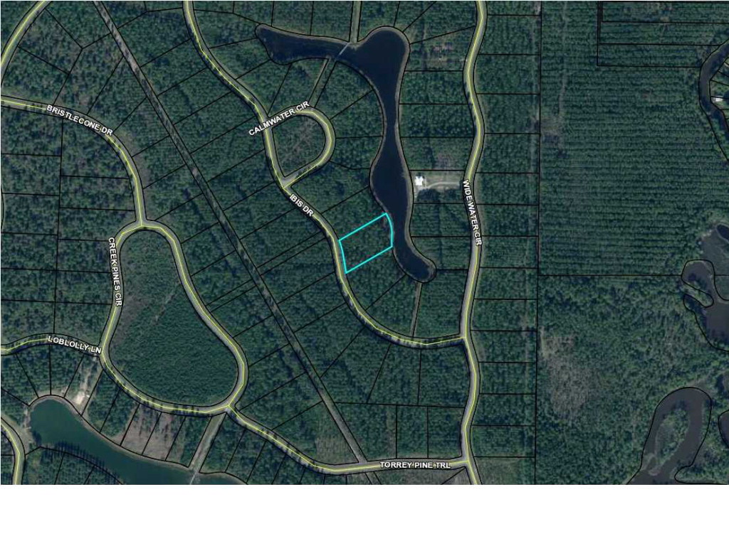 MLS Property 261928 for sale in Wewahitchka