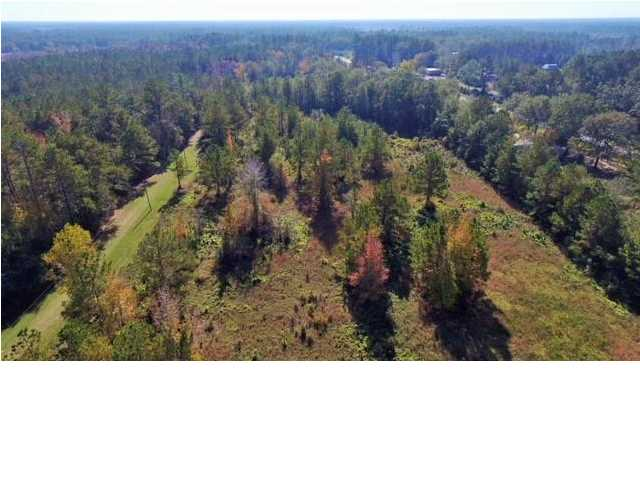 MLS Property 261941 for sale in Wewahitchka