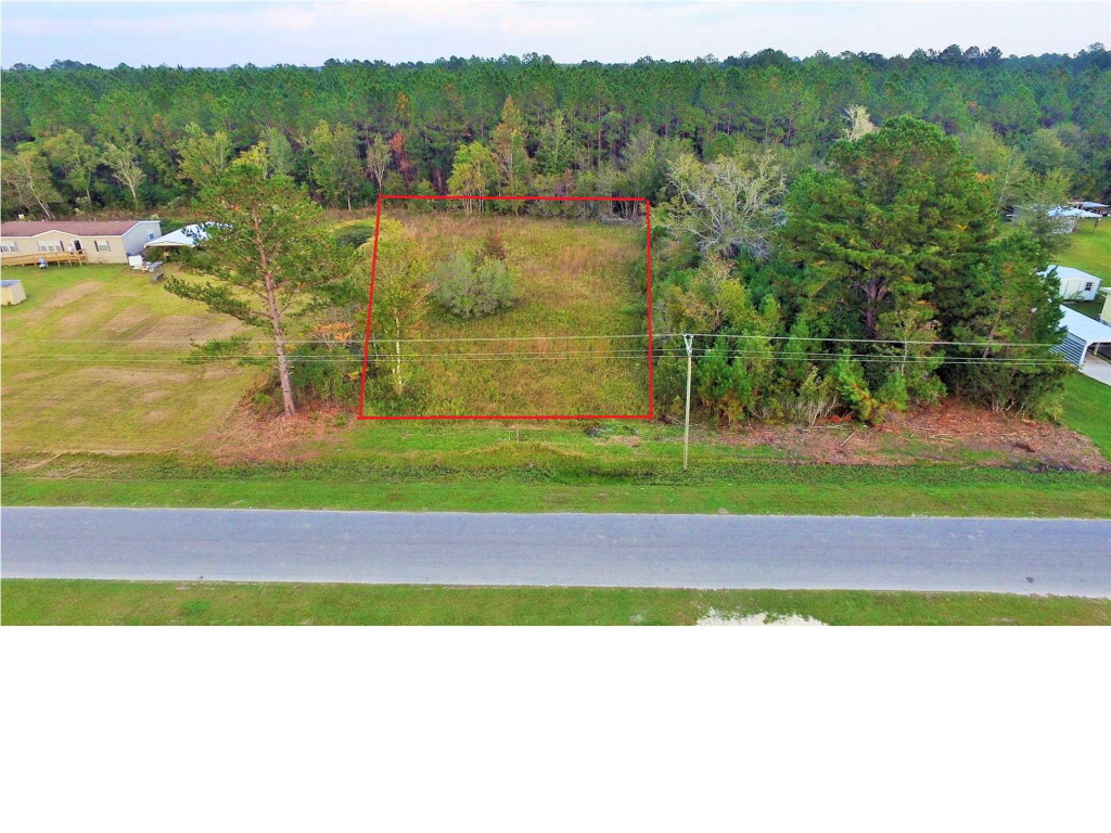 MLS Property 261984 for sale in Wewahitchka