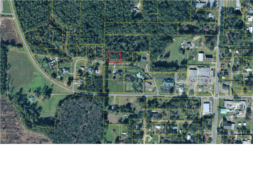 MLS Property 261994 for sale in Wewahitchka