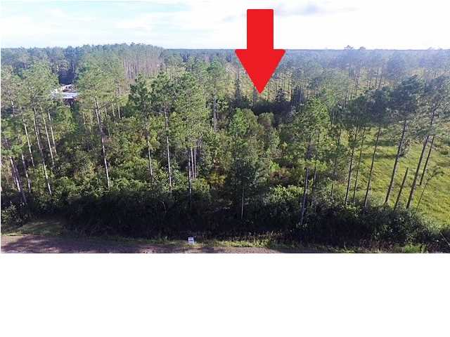 MLS Property 262932 for sale in Wewahitchka