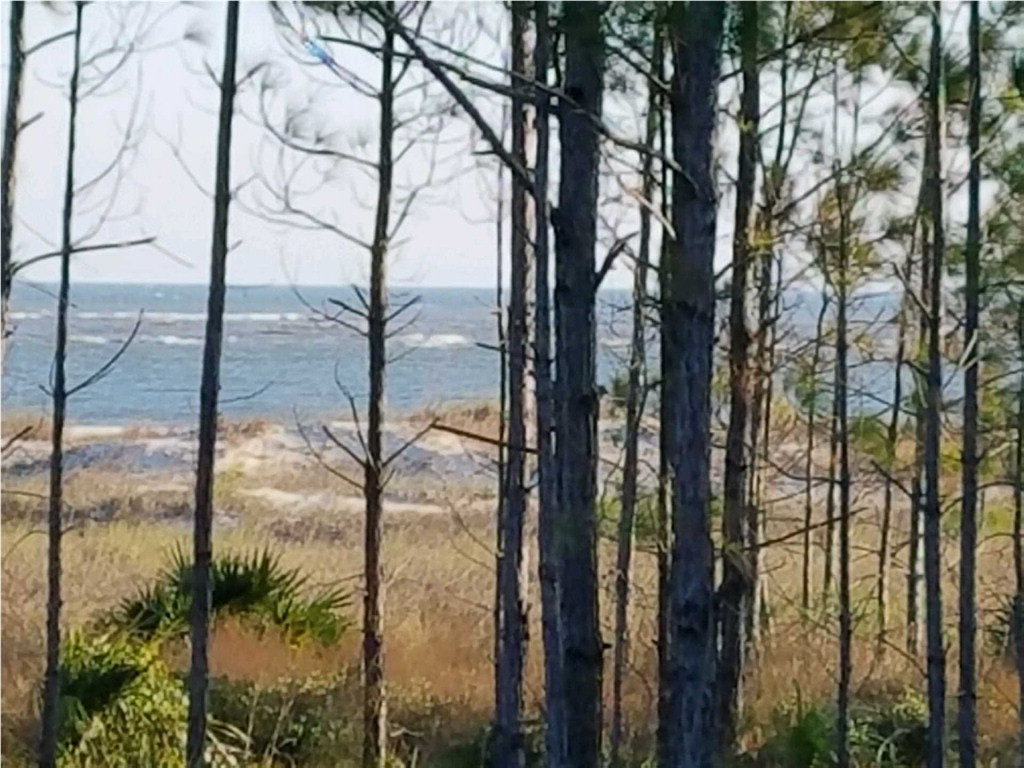 MLS Property 300745 for sale in Cape San Blas