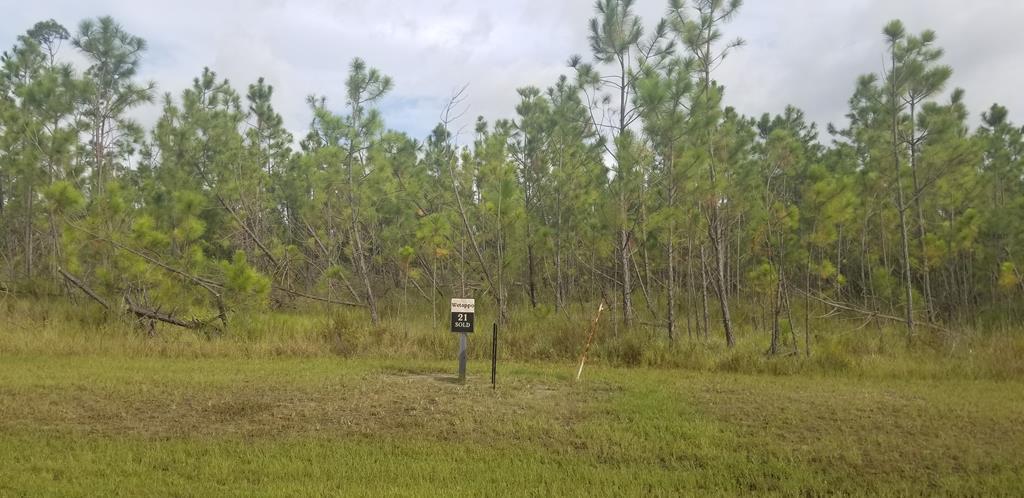 MLS Property 308152