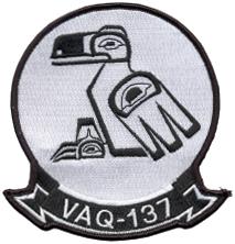 VAQ-137 Rooks