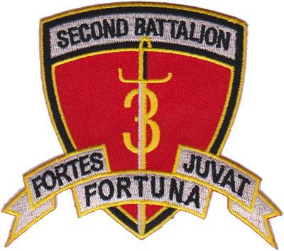 2nd Bn, 3rd Marine Regiment (2/3)