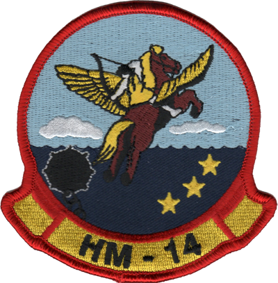 HM-14 Sea Stallions/Vanguard