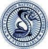 Navy Customs Battalion UNIFORM, Navy Expeditionary Logistics Support Group (NAVELSG)