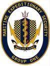 Maritime Expeditionary Security Group 1 (MESG-1), Maritime Expeditionary Security Force (MESF)