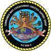 Navy Cargo Handling Battalion 5 (NCHB-5)