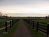Equine & Bovine Fencing