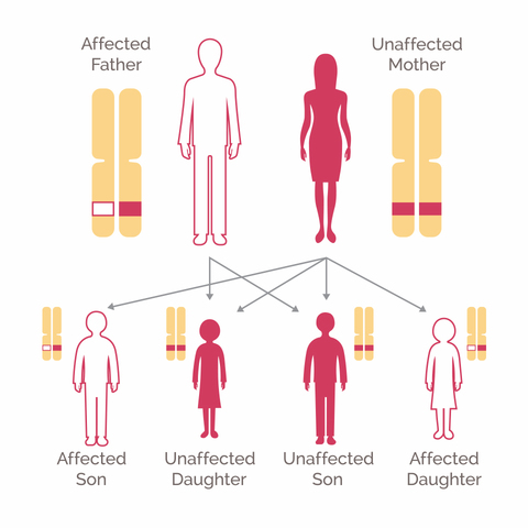 Genetic Testing For Breast Cancer National Breast Cancer