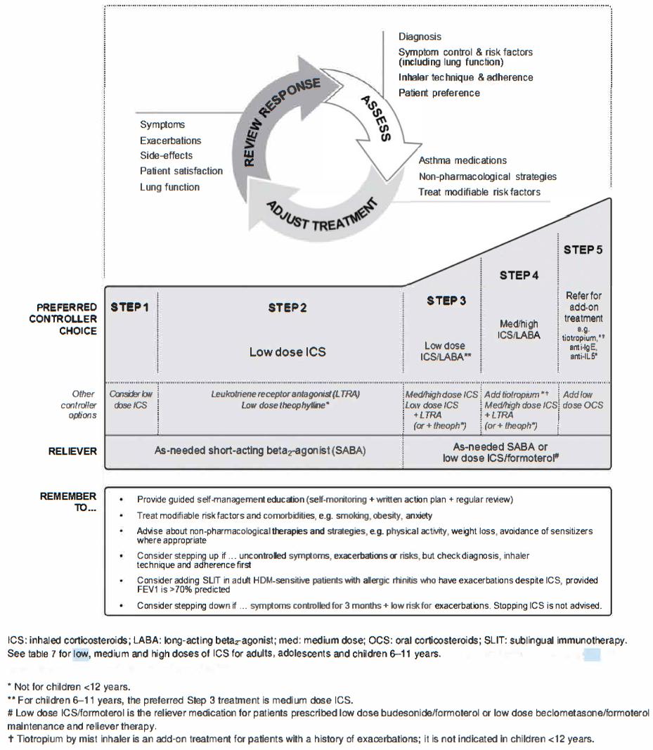 Asthma Pathophysiology, Diagnosis, and Management Nursing ...