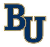 Bethel University - Minnesota logo