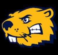 Buena Vista University logo