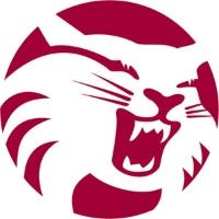 California State University - Chico logo