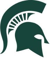 ACHA D2 & D3 - Michigan State University logo