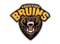 NAHL (Tier II) - Austin Bruins (Junior Hockey) logo
