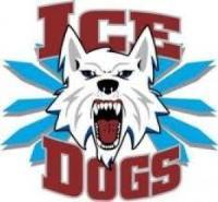 NAHL (Tier II) - Fairbanks Ice Dogs (Junior Hockey) logo