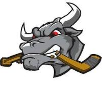 NAHL (Tier II) - Lone Star Brahmas (Junior Hockey) logo