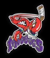 NAHL (Tier II) - Shreveport Mudbugs (Junior Hockey) logo