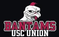 University of South Carolina - Union logo
