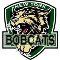 EHL (Tier III) - New York Bobcats (Junior Hockey) logo