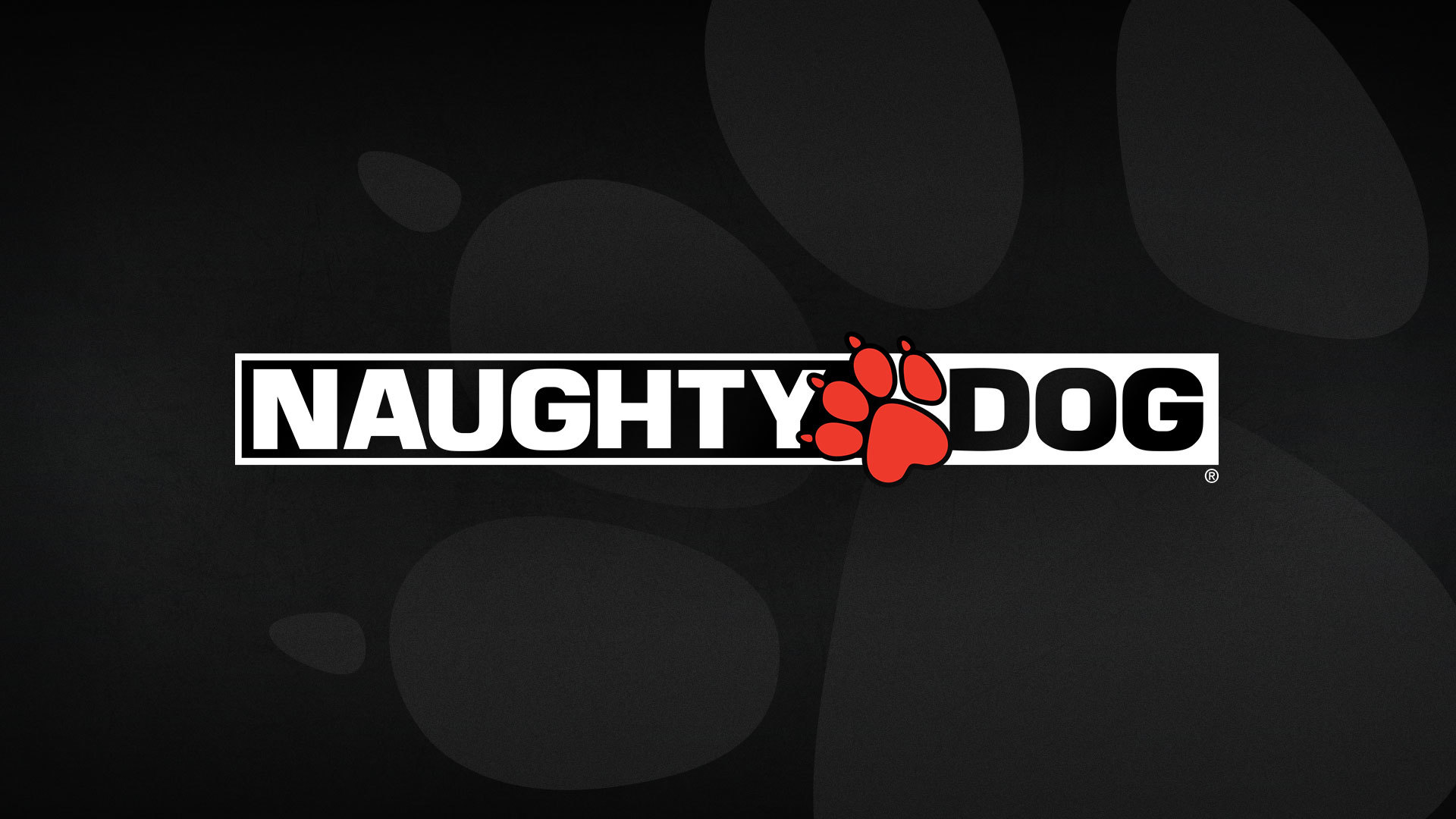 Image result for naughty dog