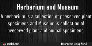 Difference Between Herbarium And Museum Diversity In Living World Explanation