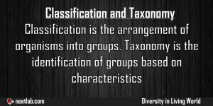 Difference Between Classification And Taxonomy Diversity In Living World Explanation