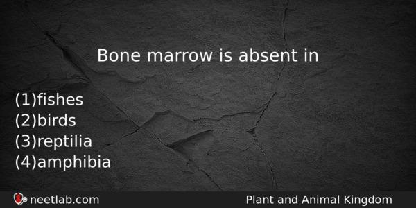 Bone marrow is absent in - NEET Lab