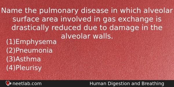 Name The Pulmonary Disease In Which Alveolar Surface Area