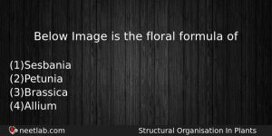 Below Image Is The Floral Formula Of Biology Question