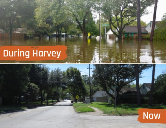 2018.10.12 BETTY COLE Flooded Street Then and Now Collage KP FINAL.jpg