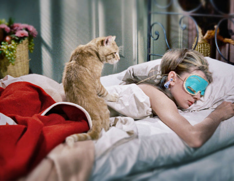 1f2763504386 Audrey Hepburn and Cat in Breakfast at Tiffany s