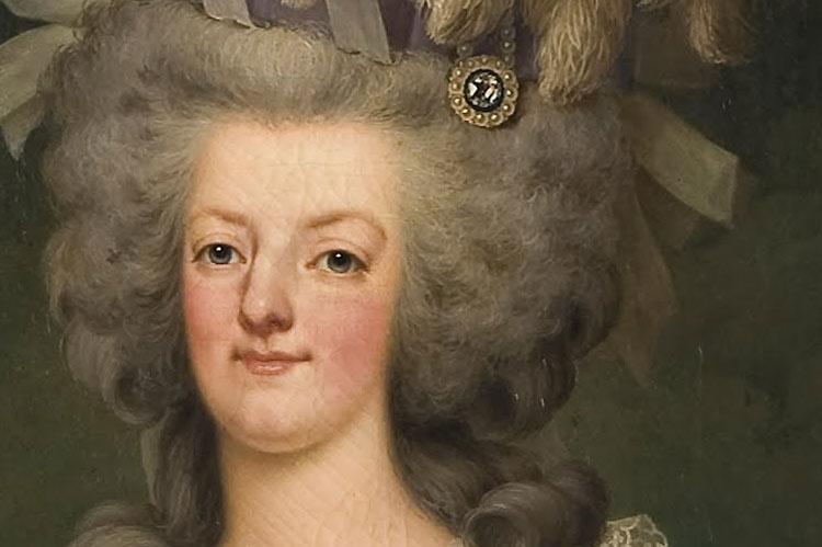 Marie Antoinette (detail) by Adolf Ulrik Wertmüller, 1785