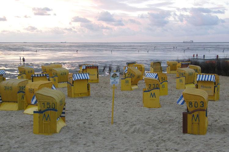 Strandkörbe along the beach