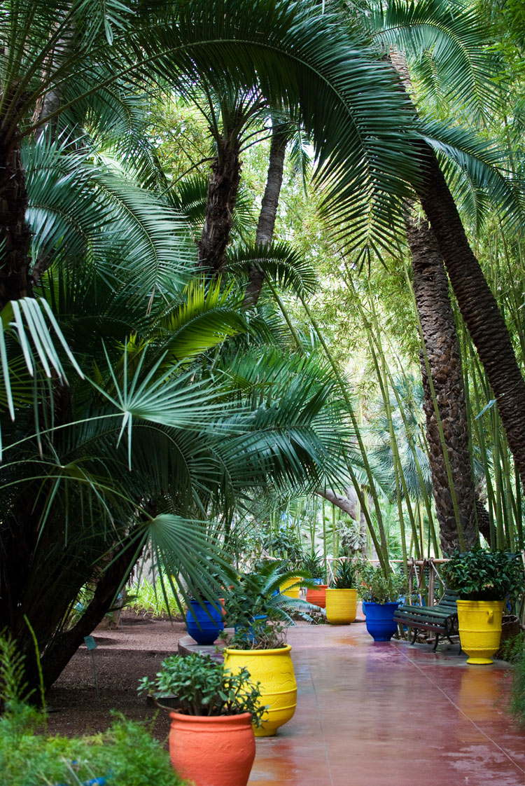 Neonscope the remarkable jardin majorelle for Jardin marrakech