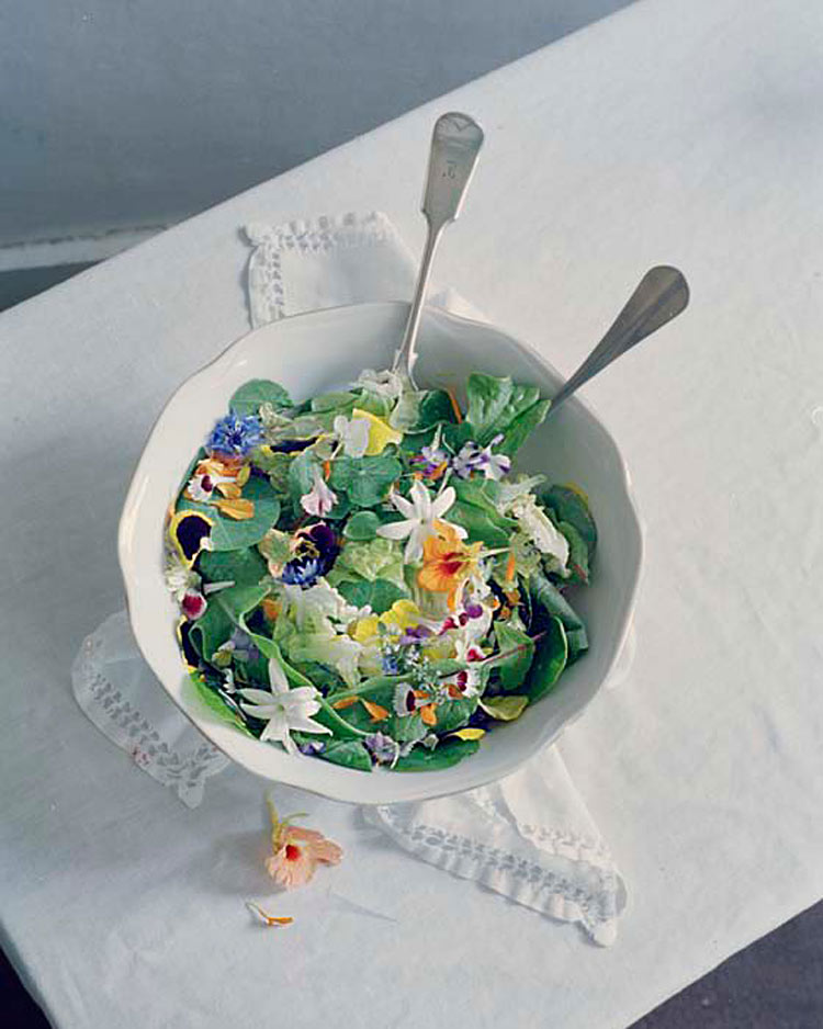 Floral Foods by Rhea Thierstein